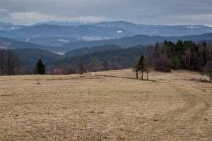 Schodząc na południe żółtym szlakiem można podziwiać piekną panoramę Babiej Góry, Jałowca i leżacej bliżej grupy Solnisk (widoczny Opuśniok i Solniska).