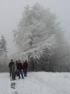Nazajutrz zejście przez Bereśnik. Po wejściu w mgłę. Fot. Gosia Dindorf.