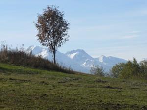Zagadka tatrzańska - widok z okolic Łapszanki