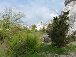 Krajobraz Skałek Rzędkowickich