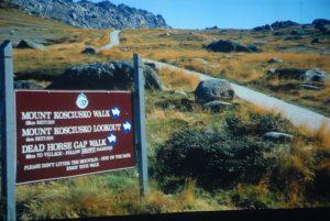 Początek szlaku na Górę Kościuszki w Australii (i jednocześnie górna stacja kolejki dowożącej tam turystów), z mającą chronić tamtejszą murawę kratownicą. Fot. Kuba Terakowski.